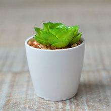 Planta Cactus Artificial con Maceta de Cerámica