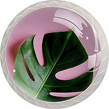 Pomos de cristal tropicales con diseño de hojas