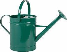 Regadera de metal verde