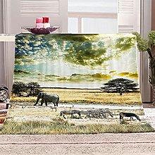 SHOMEY Manta de Franela Cebra 100x130 cm Muy Suave