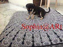 Sophia Art Almohada de suelo de mandala de pavo
