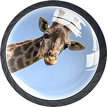 Tirador para Muebles Animal Jirafa Perilla del