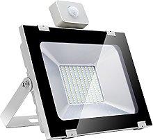 TryLight Foco LED con detector de movimiento LED
