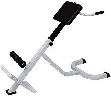 vidaXL Banco de ejercicios de lumbares - Negro