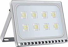 Viugreum 50W LED Foco Exterior de alto brillo, Led