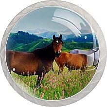WARMFM Flores campo caballos Juego de 4 pomos para