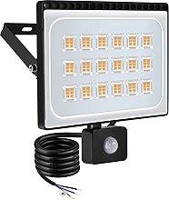WZFANJIJ 100w Foco LED con Sensor de Movimiento,