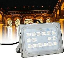 WZFANJIJ 50W Foco LED, Proyector Led Exterior