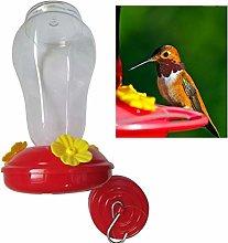 XiaoOu Boca Ancha Cintura Comedero para colibrí