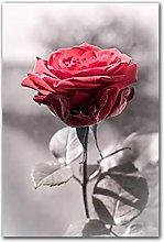 YABINGA Impresión en Lienzo nórdica Rosa roja