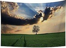 YongFoto 150x100cm Paisaje Tapiz, Tapices Del
