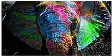zxiany Pintura sobre Lienzo Graffiti Animal