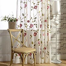 ZYY-Home curtain Cortina Bordado Traslucida